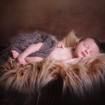 Newbornshooting in Nordhackstedt – kleiner Besuch aus Nordfriesland