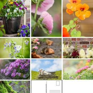 Postkarten Frühling-/Sommerkollektion – 10Stk.