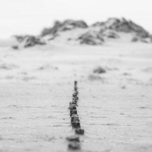 "Leinwand ""Pflock im Sand"" 80cmx120cm"