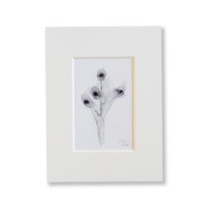 Kunstdruck Aquarell- Pusteblume