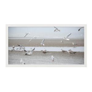 """Gerahmter Fotodruck """"Möwenschwarm St. Peter Ording"""" 120cm x 60cm weißer Rahmen"""