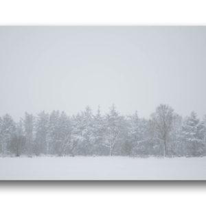 Fotodruck DIN A4 – Winterwald