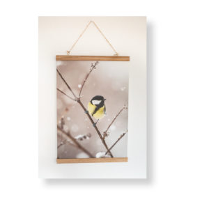 Bilderleiste mit Fotodruck A3 – Kleine Meise