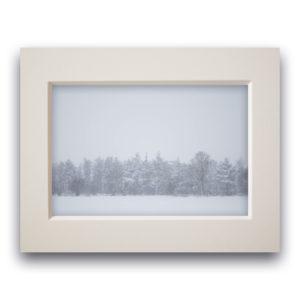 Fotodruck im Passepartout – Winterwald